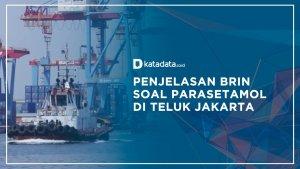 Parasetamol Teluk Jakarta