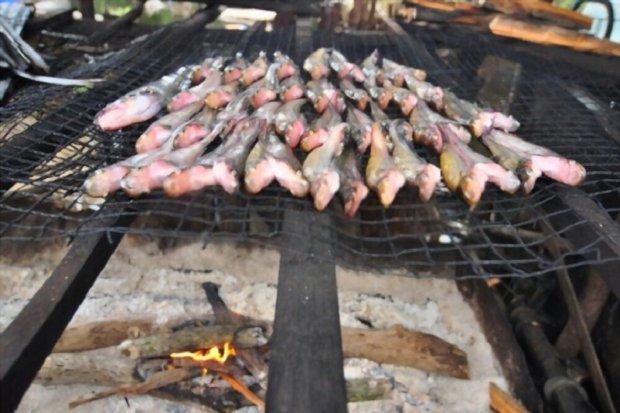 Olahan Ikan Gabus Bakar