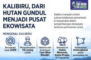 Infografik_Kalibiru, dari Hutan Gundul Menjadi Pusat Ekowisata
