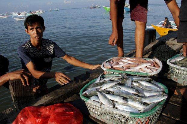 nelayan, perikanan, KKP, pengusaha