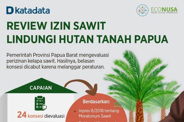 Infografik_Review Izin Sawit Lindungi Hutan Tanah Papua