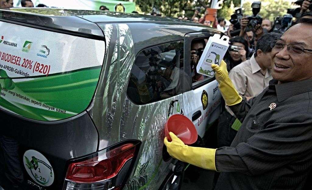 Biodiesel KATADATA | Arief Kamaludin