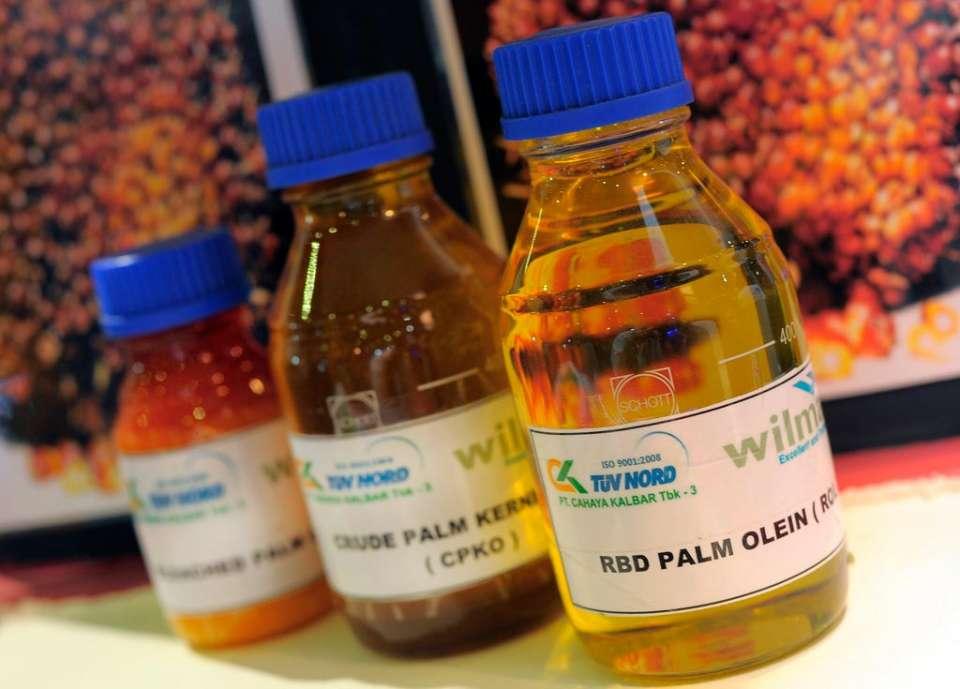 kelapa sawit, ekspor CPO ke Timur Tengah dan Afrika
